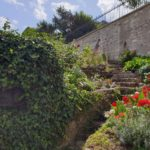 My Montmartre Tours - Hidden path with flowers and vineyards